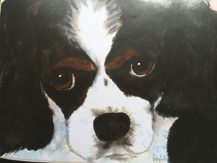 Virginia Moore Pet Portraits - Cavalier King Charles