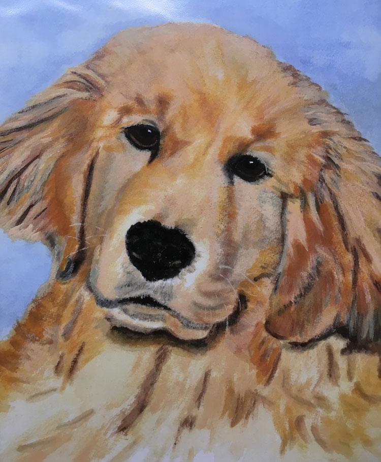 Virginia Moore Pet Portraits - Colby Patrick