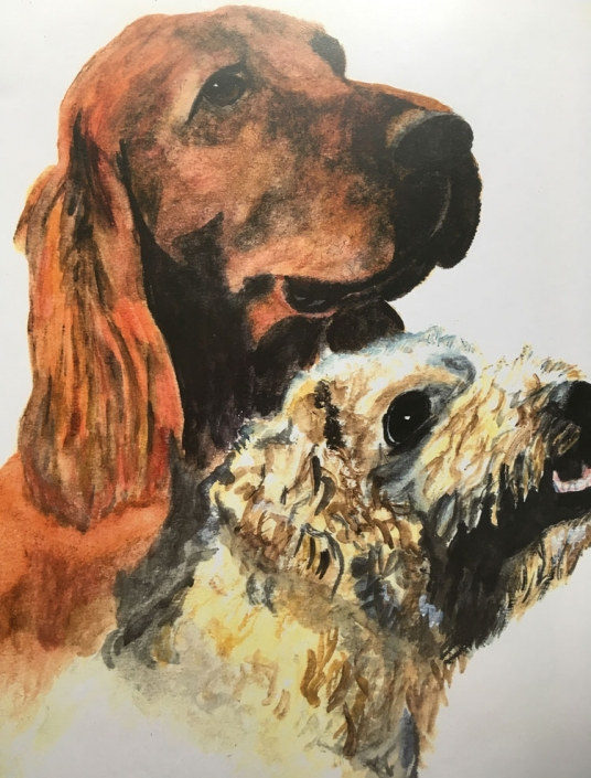 Virginia Moore Pet portrait - Irish Setter & Poodle