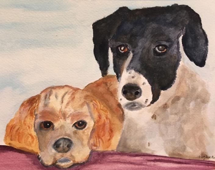 Virginia Moore Pet Portrait