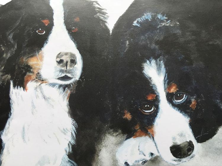 Virginia Moore Pet portrait - The Berners