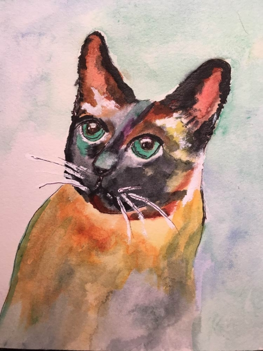 Virginia Moore Pet Portraits - Siamese