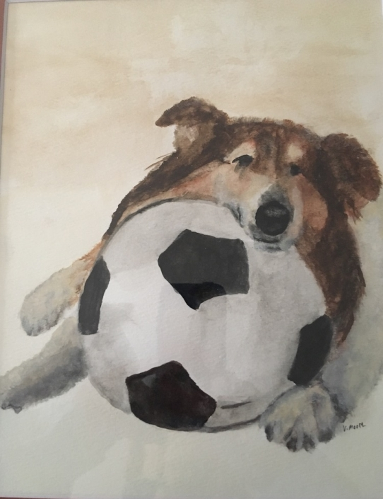pet portrait dog with ball